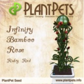 PlantPet Seed [Infinity Bamboo Rose *Ruby Red*]