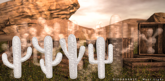 DISORDERLY. / West Light / Tall Cactus Set