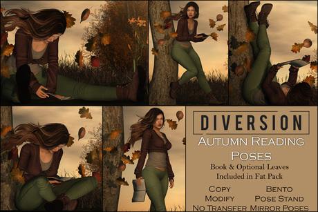 Diversion - Autumn Reading Poses // Bento