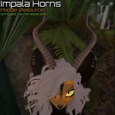 [inZoxi] - Impala Horns Box