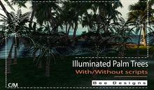 Bee Designs Illuminated Palm Trees