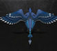 Bluejay01