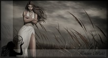 :LW: Bento Poses - Something In The Wind