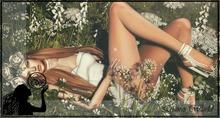:LW: Bento poses - Antisocial BOXED