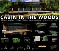 22769 - Modern Cabin In The Woods - RARE