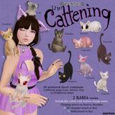 darkendStare. The Cattening - Cupcake (Play)