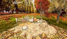 backdrop Autumn
