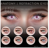 ANATOMY - REFRACTION EYES - COMMON - GREY