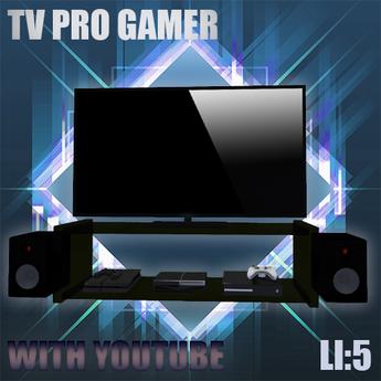 *Pro Gamer Tv Youtube 1.0*
