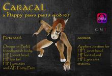 Wear Me - Caracal mod kit