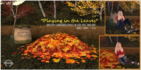 Sequel - Playing in the Leaves Set - Autumn Decoration