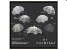 box) {anc} my umbrella (fabric) w frill