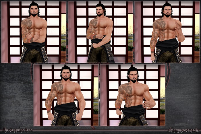 [ t.s.t ] Shinryu Pose Pack [ WEAR & CLICK ]