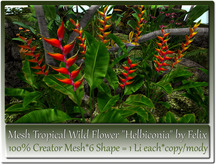 Mesh Tropical Wild Flower Helbiconia by Felix 6 Shape=1 Li c-m