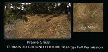 Vita's Textures - PRAIRIE GRASS 3D 1024 Seamless