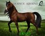 Horsen' Around [Teegle Skin] - The Celtique Stallion