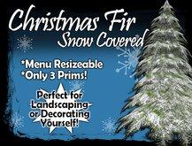 MG - Christmas Snow Fir - Plain