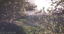 Lycium Tree Animated 4 Seasons