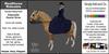 *E* RealHorse Animesh Rideable Horse - Quarter Horse Sidesaddle [Add & Click]