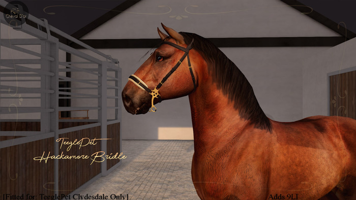 Cheval D'or / TeeglePet Clydesdale / Hackamore Bridle.