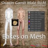 .:.H/D.:. Ocacin Gamit Male for BoM v1.0 [20ASL3]