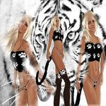 Kitty full female furry kitty cat designer outfit - resell box