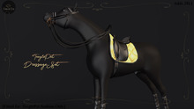 Cheval D'or / TeeglePet Arabian / Dressage Set. [Boxed]
