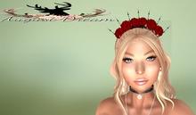 `*AD*`Divina Rose Crown Fatpack Box