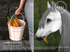 REIN - TeeglePet Carrot Bucket