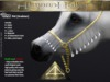 Abaddon arts   tpet   almaas halter gold arabian slmp