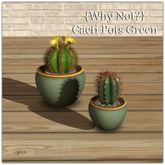 {Why Not?} Cacti Pots Green Boxed