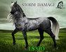 Storm Damage [Teegle Skin Applier] - The Celtique Stallion