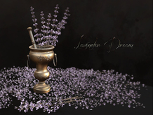 Camdem - A Moment in Time Lavender Dream