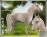 """Mahon"" Texture Kit - Teeglepet/Teegle Horse"