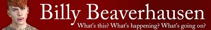 Billy beaverhausen store banner