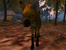 Cheetox for TWI fox