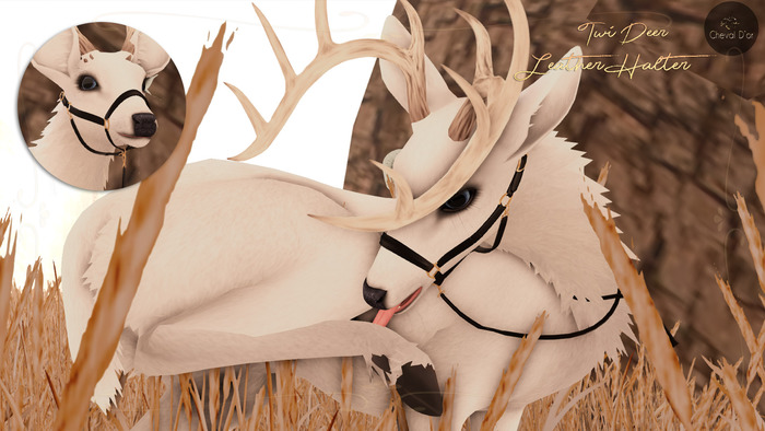 Cheval D'or / TWI Deer /  Leather Halter.