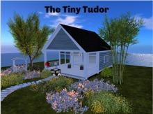 Tiny Tutor