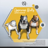 [Rezz Room] Box American Bully Adult Animesh (Companion)