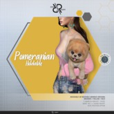 [Rezz Room] Box Pomeranian Animesh (Holdable)