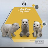 [Rezz Room] Box Polar Bear Baby Animesh (companion)