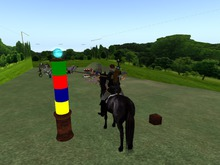 Jousting Practice Pole for unity Maxim and more