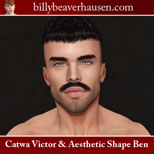 Catwa Victor & Aesthetic Shape Ben