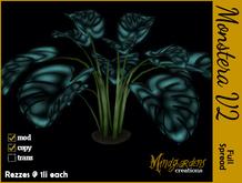 MG - Monstera Plant v2 Full Spread - Glowy