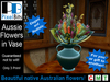 Beautiful Aussie Flowers in a Vase *Trans/Mod*