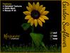 MG - Garden Sunflower
