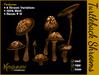 Mg   shrooms revised turtleback