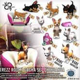 [Rezz Room] Pack Chihuahua Animesh (Companion) RARE