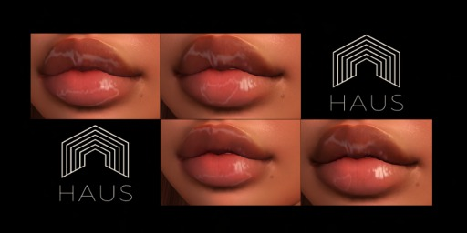 HAUS - Wet Lipz Omega Applier