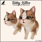 {Nano} Tabby Kitten {Box}
